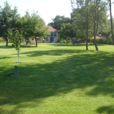 2011-08-12-11-1.jpg